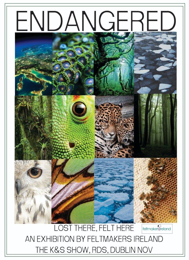 endangered poster 16706945512491622492..jpg